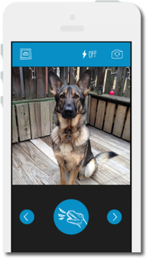 Aplicaciones interesantes para los amantes de las mascotas