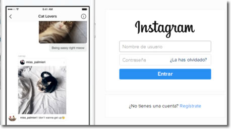 Cómo eliminar una cuenta de Instagram para siempre