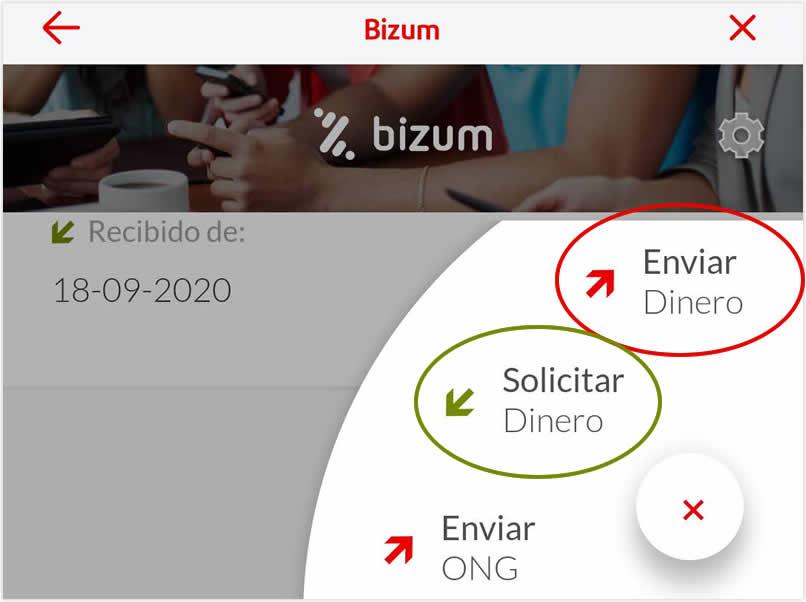 Solicitar enviar Bizum